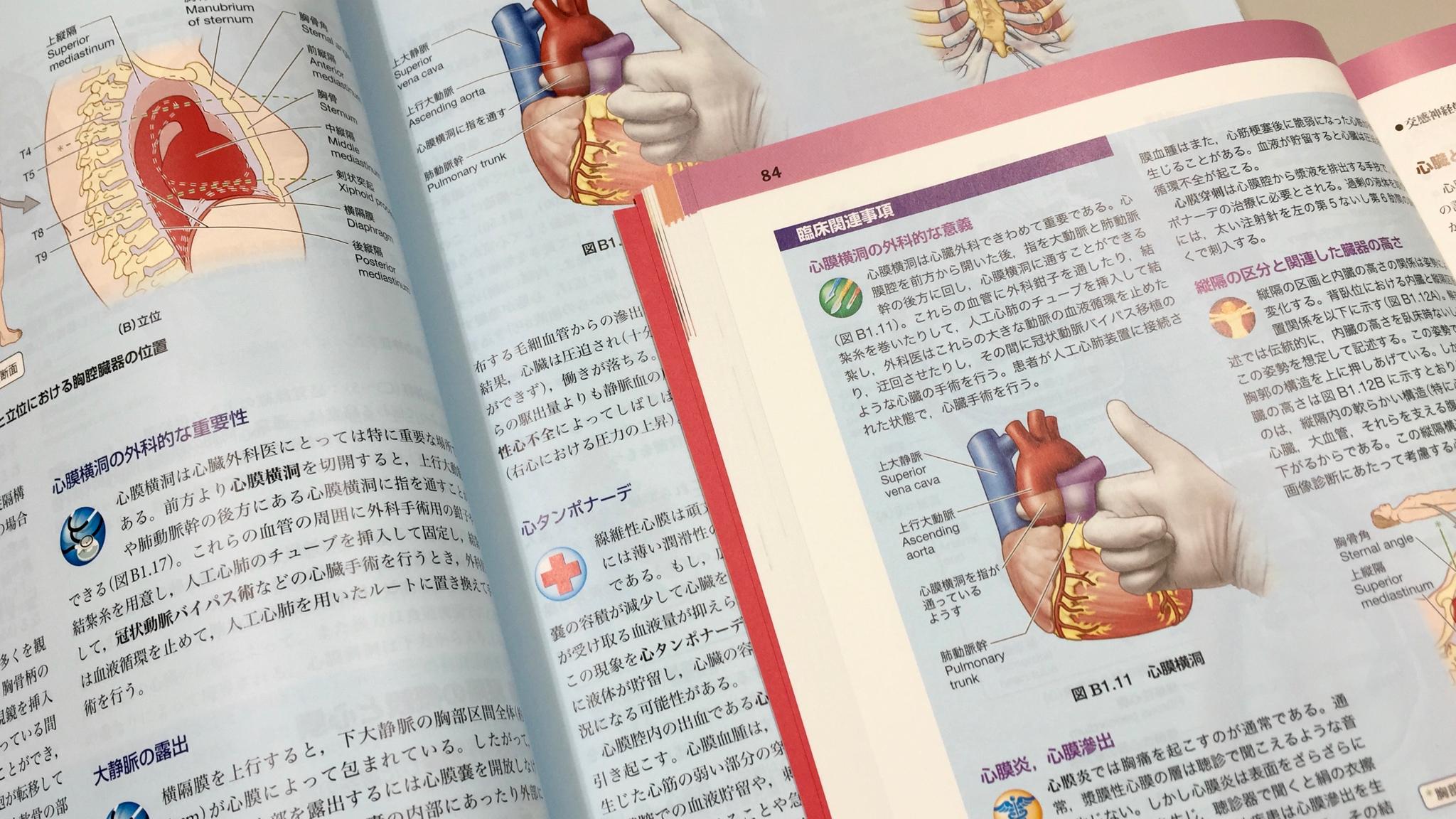 臨床関連事項。重要なものが選抜されている。